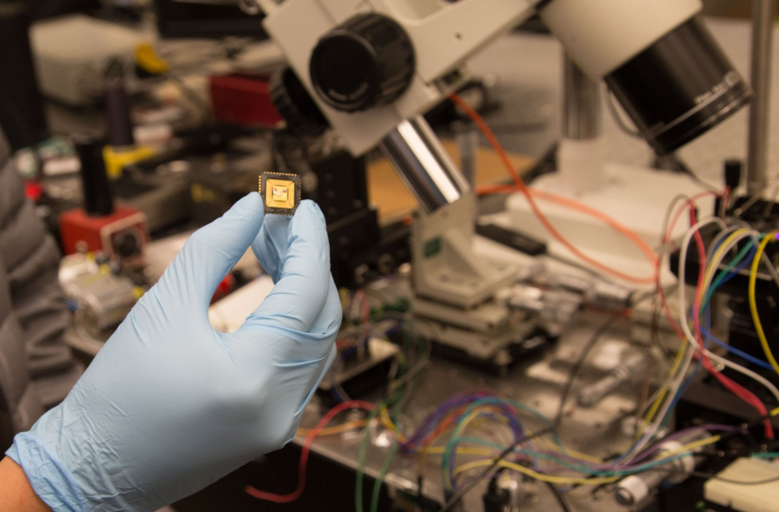 Gloved hands in lab holding electronic component General research image.