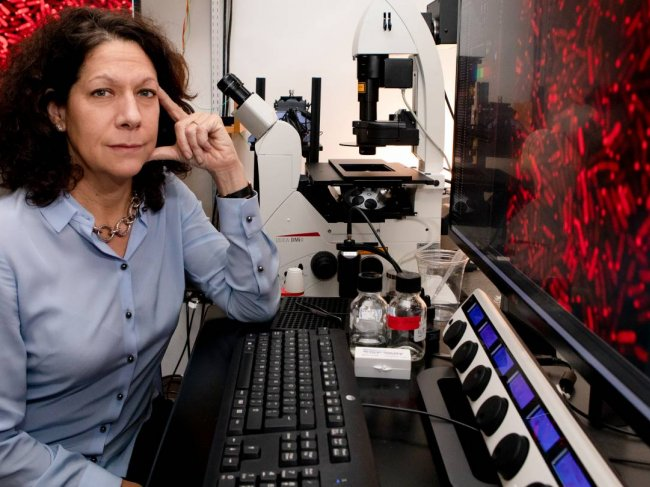 Bonnie Bassler poses in a laboratory at Princeton, where she is the Squibb Professor in Molecular Biology and chair of the Department of Molecular Biology.
