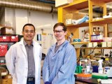 Princeton cancer researchers Yibin Kang (left) and Mark Esposito